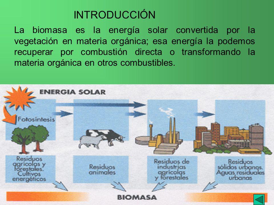 I.E.S. JAIME GIL de BIEDMA La biomasa es la energía solar convertida por la vegetación en materia orgánica; esa energía la podemos recuperar por combu