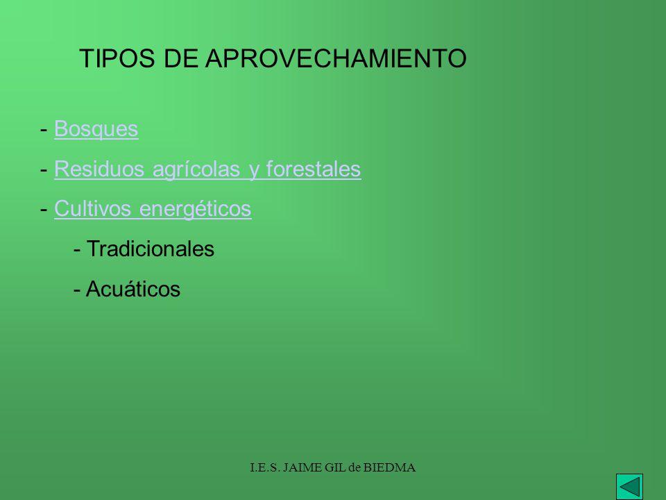 I.E.S. JAIME GIL de BIEDMA TIPOS DE APROVECHAMIENTO - BosquesBosques - Residuos agrícolas y forestalesResiduos agrícolas y forestales - Cultivos energ