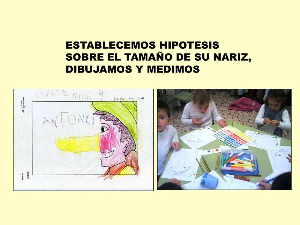 ESTABLECEMOS HIPOTESIS SOBRE EL TAMAÑO DE SU NARIZ, DIBUJAMOS Y MEDIMOS