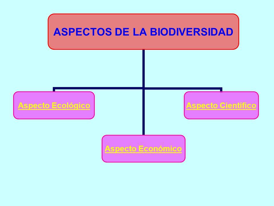 ASPECTOS DE LA BIODIVERSIDAD Aspecto Ecológico Aspecto Económico Aspecto Científico