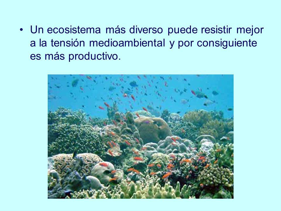 Un ecosistema más diverso puede resistir mejor a la tensión medioambiental y por consiguiente es más productivo.