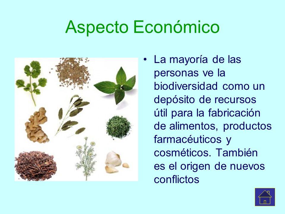 Aspecto Económico La mayoría de las personas ve la biodiversidad como un depósito de recursos útil para la fabricación de alimentos, productos farmacé