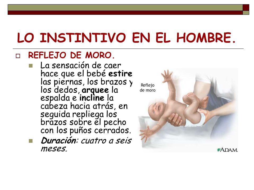 LO INSTINTIVO EN EL HOMBRE. REFLEJO DE MORO. La sensación de caer hace que el bebé estire las piernas, los brazos y los dedos, arquee la espalda e inc