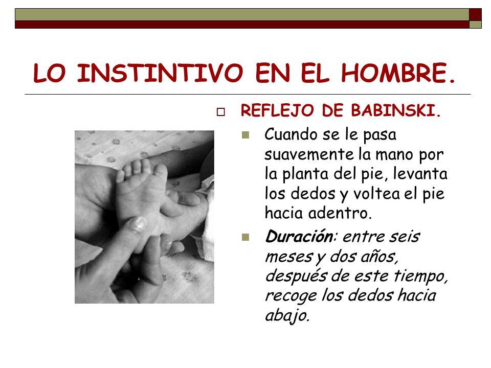 LO INSTINTIVO EN EL HOMBRE. REFLEJO DE BABINSKI. Cuando se le pasa suavemente la mano por la planta del pie, levanta los dedos y voltea el pie hacia a