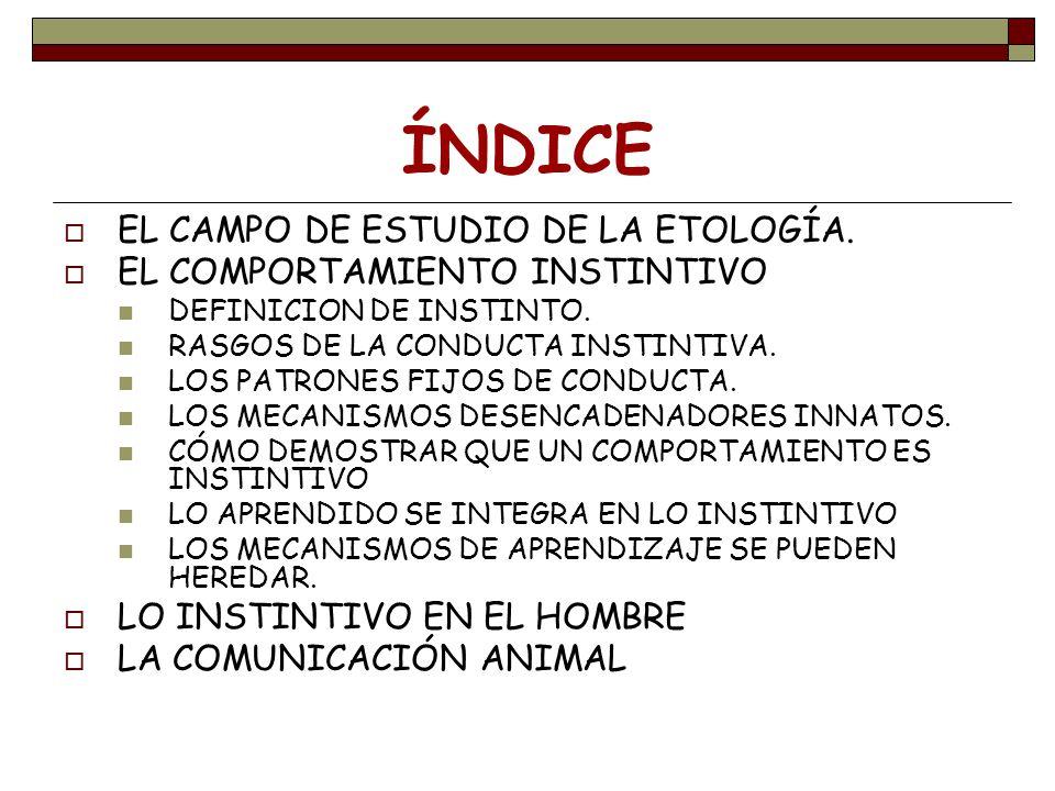 ÍNDICE EL CAMPO DE ESTUDIO DE LA ETOLOGÍA. EL COMPORTAMIENTO INSTINTIVO DEFINICION DE INSTINTO. RASGOS DE LA CONDUCTA INSTINTIVA. LOS PATRONES FIJOS D