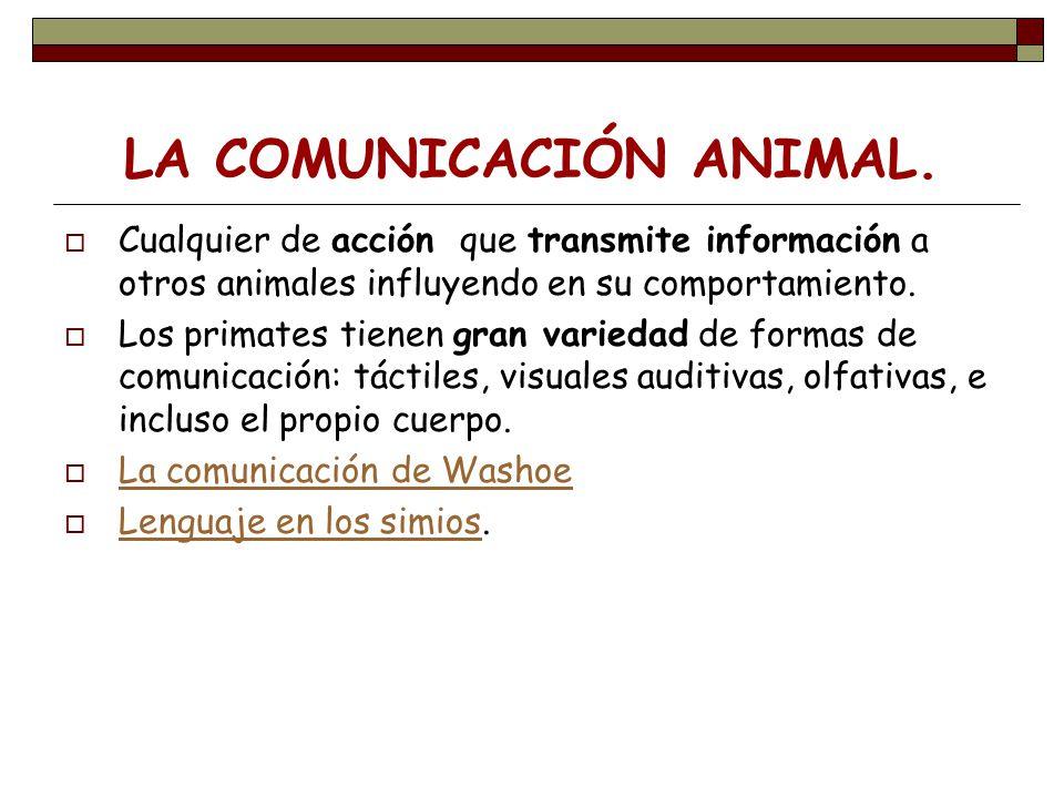 LA COMUNICACIÓN ANIMAL. Cualquier de acción que transmite información a otros animales influyendo en su comportamiento. Los primates tienen gran varie