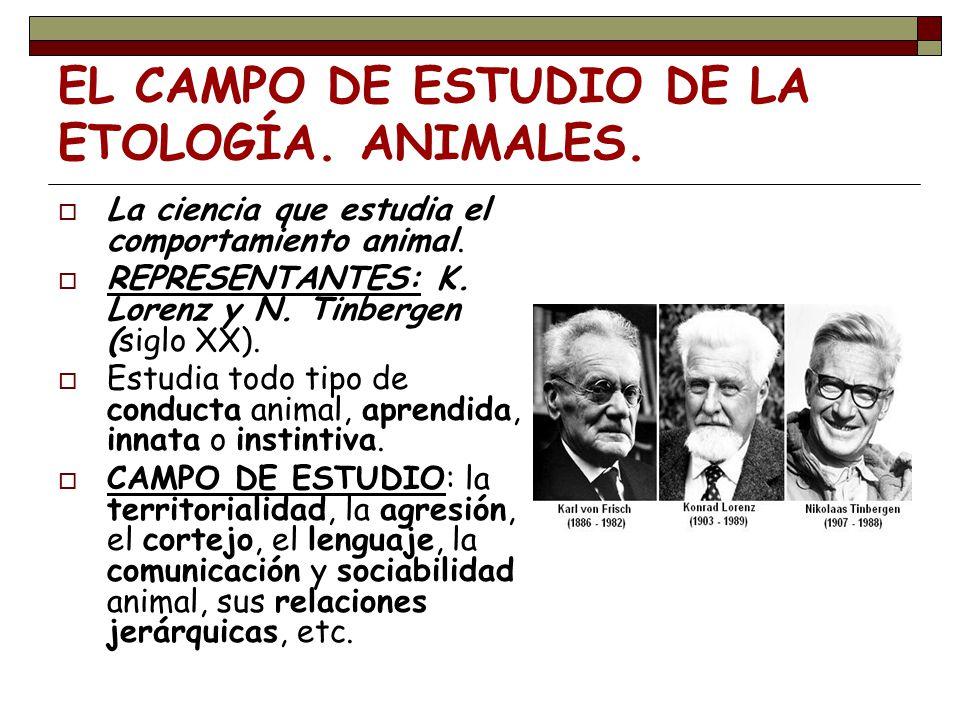 EL CAMPO DE ESTUDIO DE LA ETOLOGÍA. ANIMALES. La ciencia que estudia el comportamiento animal. REPRESENTANTES: K. Lorenz y N. Tinbergen (siglo XX). Es