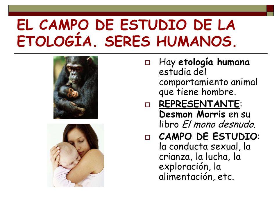 Hay etología humana estudia del comportamiento animal que tiene hombre. REPRESENTANTE: Desmon Morris en su libro El mono desnudo. CAMPO DE ESTUDIO: la