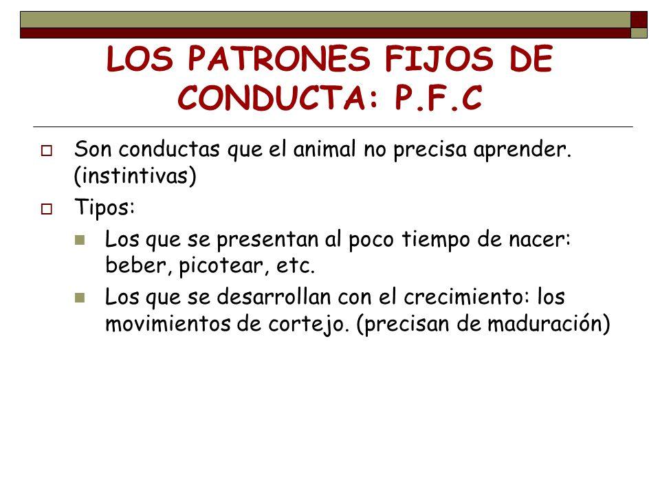 LOS PATRONES FIJOS DE CONDUCTA: P.F.C Son conductas que el animal no precisa aprender. (instintivas) Tipos: Los que se presentan al poco tiempo de nac