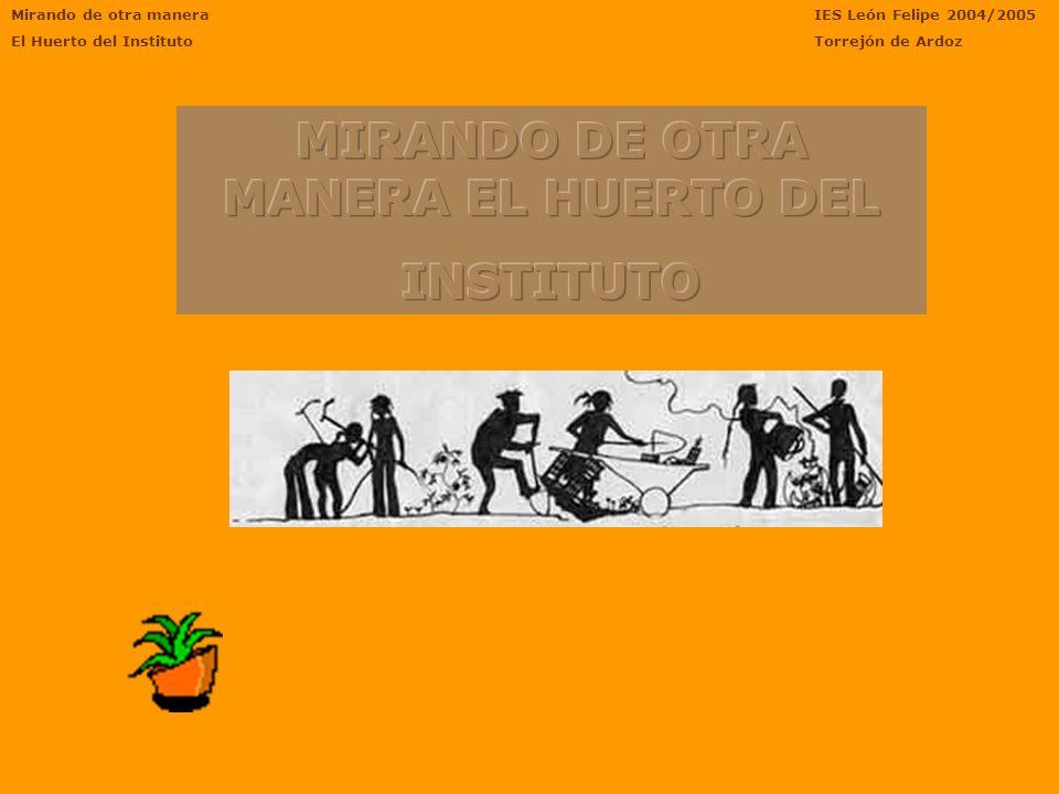 Mirando de otra manera El Huerto del Instituto IES León Felipe 2004/2005 Torrejón de Ardoz