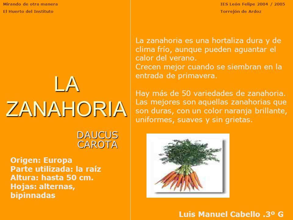 Mirando de otra manera El Huerto del Instituto IES León Felipe 2004/2005 Torrejón de ArdozPIMIENTO Fue traído al Viejo Mundo por Colón en su primer vi