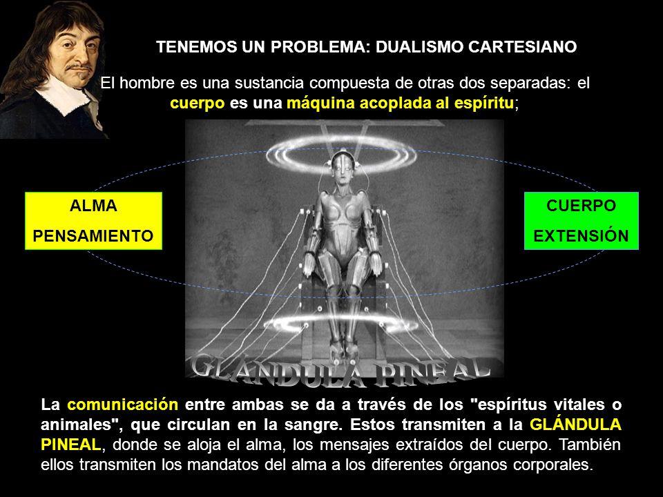 TENEMOS UN PROBLEMA: DUALISMO CARTESIANO El hombre es una sustancia compuesta de otras dos separadas: el cuerpo es una máquina acoplada al espíritu; L