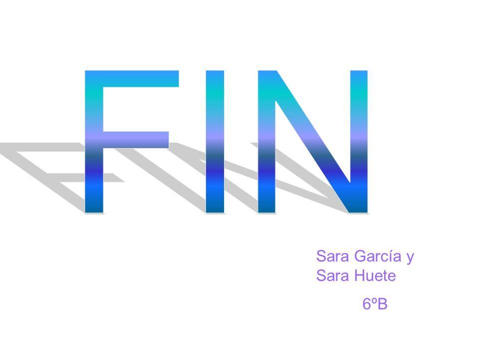 Sara García y Sara Huete 6ºB