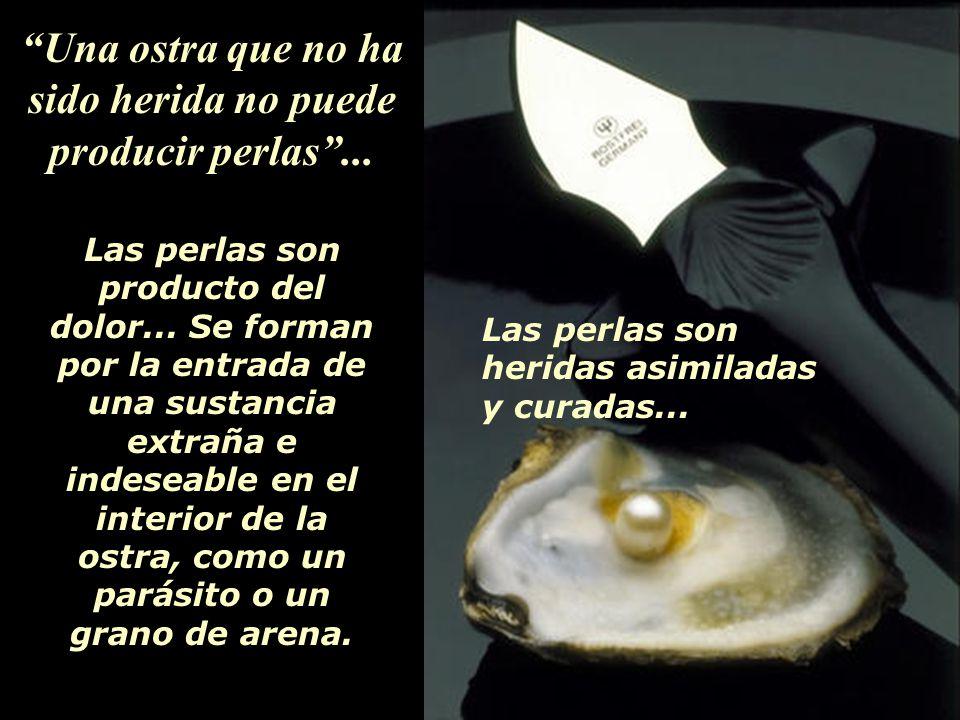 Una ostra que no ha sido herida no puede producir perlas...