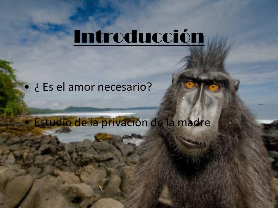 Introducción ¿ Es el amor necesario? Estudio de la privación de la madre