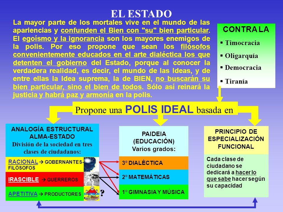 EL ESTADO CONTRA LA Timocracia Oligarquía Democracia Tiranía Propone una POLIS IDEAL basada en PAIDEIA (EDUCACIÓN) Varios grados: 3º DIALÉCTICA 2º MATEMÁTICAS 1º GIMNASIA Y MÚSICA PRINCIPIO DE ESPECIALIZACIÓN FUNCIONAL Cada clase de ciudadano se dedicará a hacer lo que sabe hacer según su capacidad ANALOGÍA ESTRUCTURAL ALMA-ESTADO División de la sociedad en tres clases de ciudadanos: RACIONAL GOBERNANTES- FILÓSOFOS IRASCIBLE GUERREROS APETITIVA PRODUCTORES .