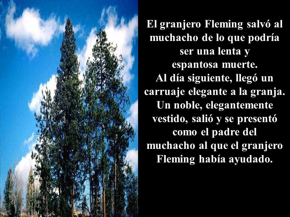 El granjero Fleming salvó al muchacho de lo que podría ser una lenta y espantosa muerte.