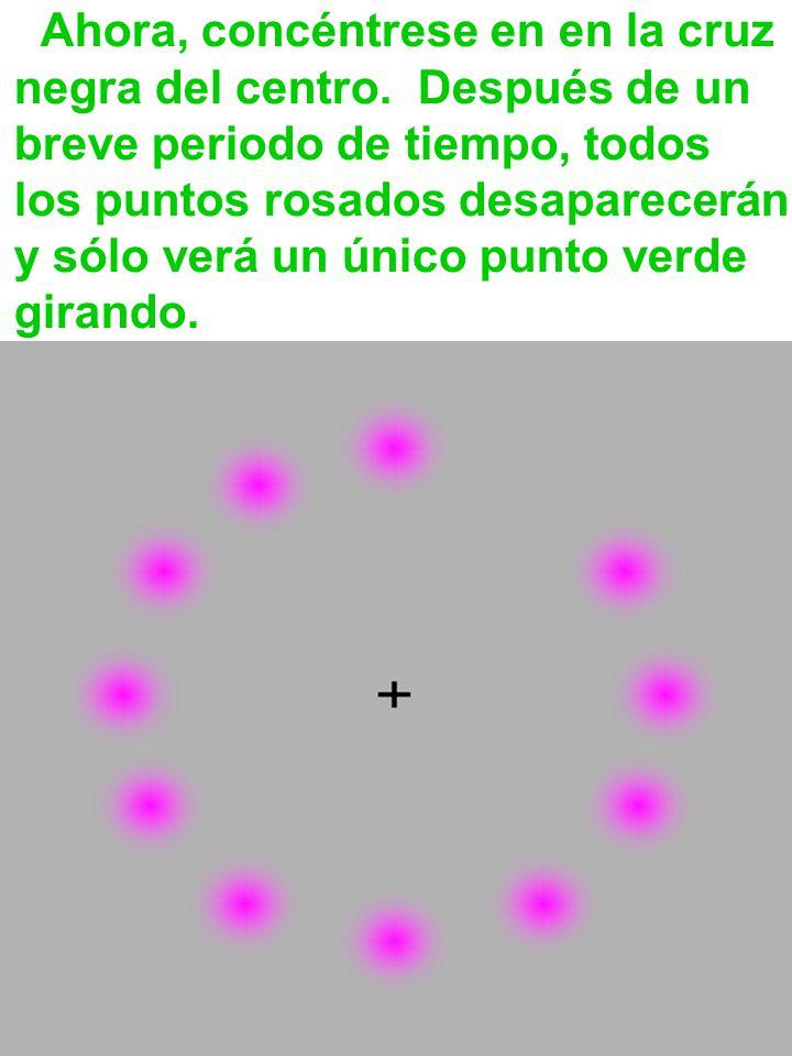 Ahora, concéntrese en en la cruz negra del centro. Después de un breve periodo de tiempo, todos los puntos rosados desaparecerán y sólo verá un único