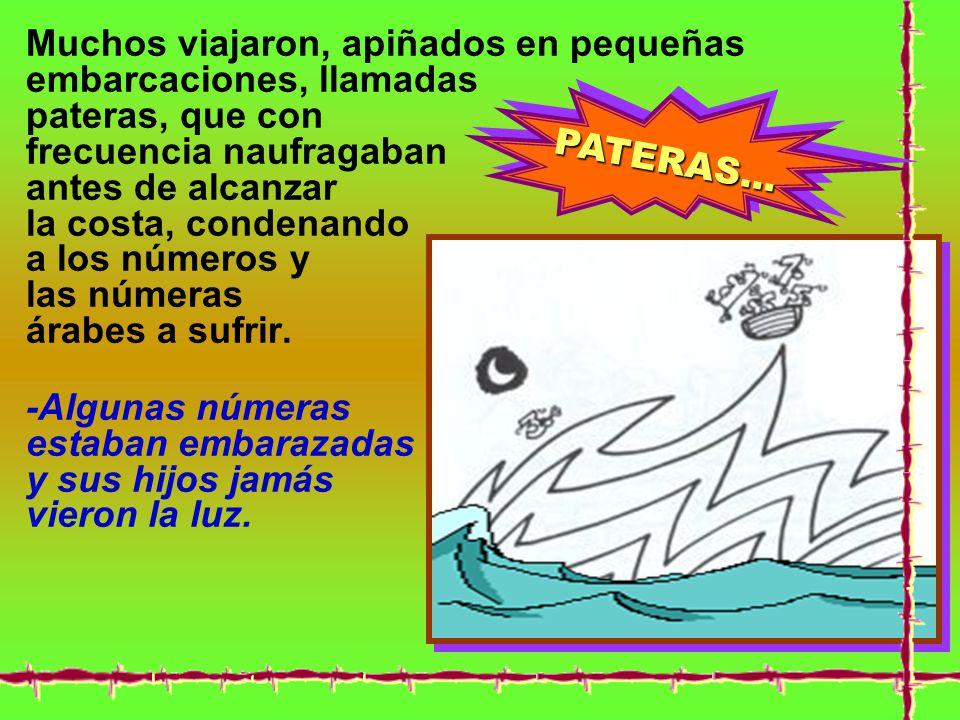 PATERAS...PATERAS...