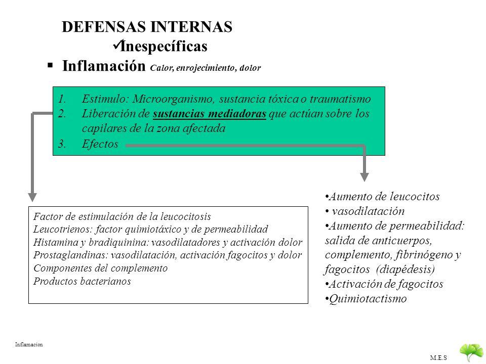 M.E.S DEFENSAS DEL ORGANISMO EXTERNAS O PASIVAS : previenen la invasión Estructurales: Piel y mucosas Mecánicas: Cilios de las vías respiratorias, flu