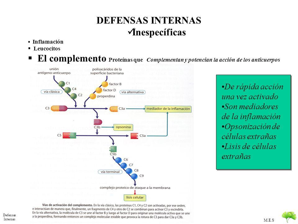 M.E.S Defensas Internas DEFENSAS INTERNAS Inespecíficas Inflamación Leucocitos actividad fagocítica y Desgranulación : Fagocitos y Neutrofilos Se form