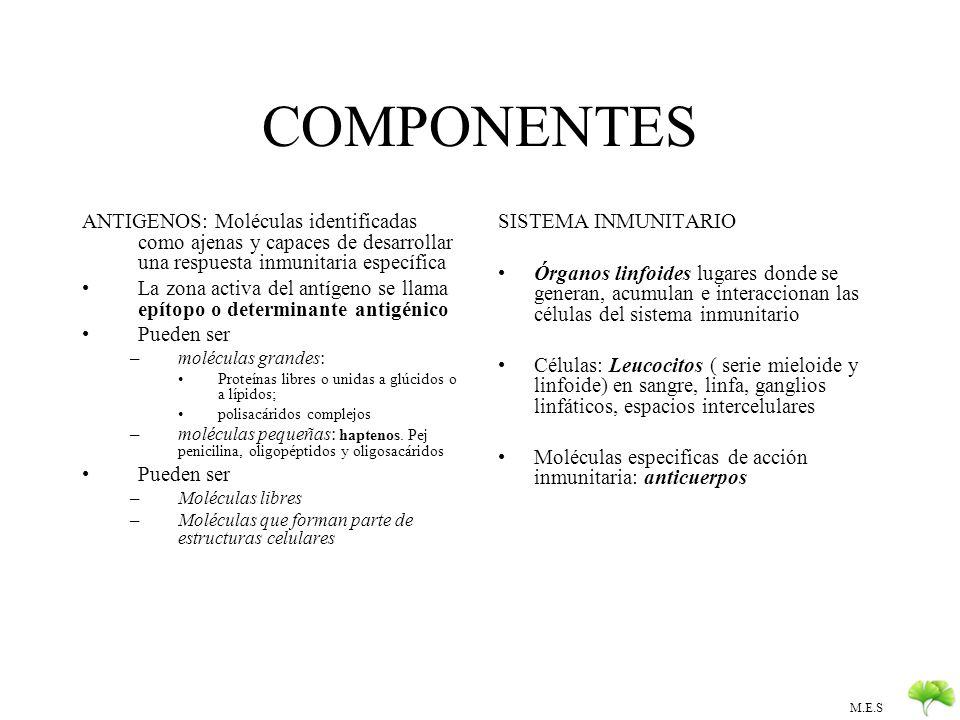 M.E.S Memoria inmunológica y respuestas