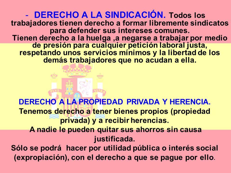 -DERECHO A LA EDUCACIÓN: Todos los españoles tenemos derecho a la educación. - Podemos elegir libremente el colegio que nos guste. La Enseñanza Primar