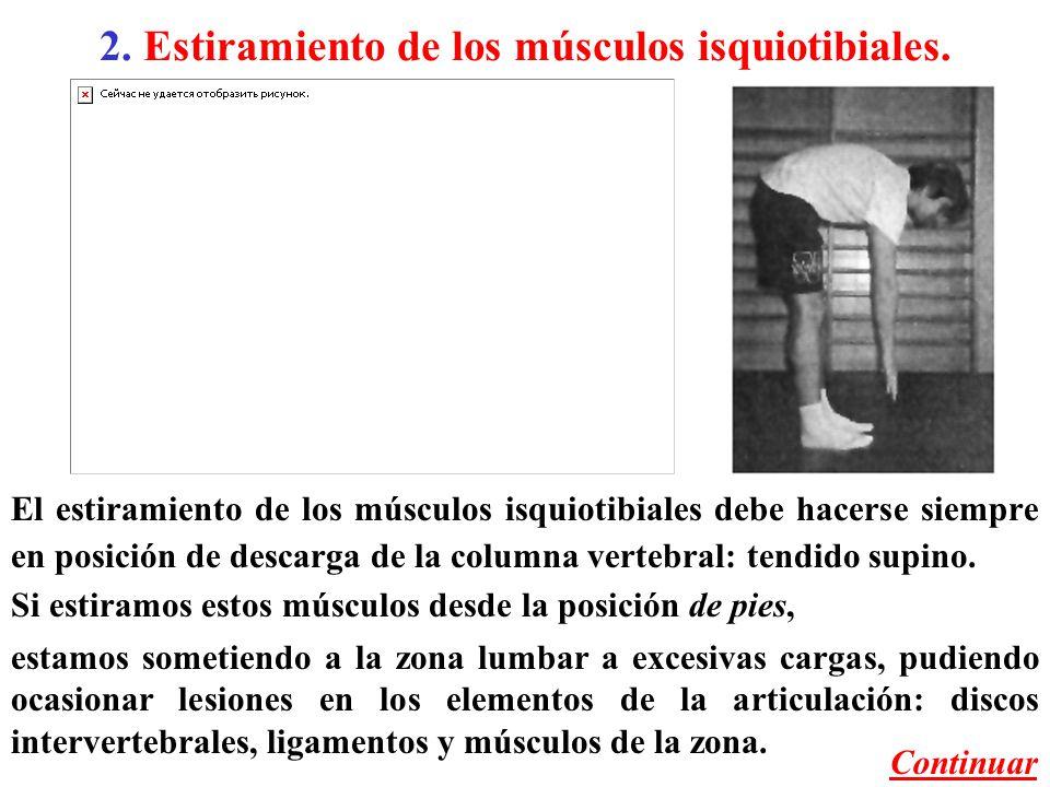 Estiramiento de los músculos isquiotibiales.