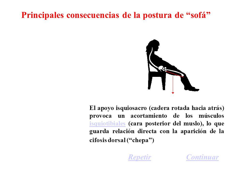 Principales consecuencias de la postura de sofá El apoyo isquiosacro (cadera rotada hacia atrás) provoca un acortamiento de los músculos isquiotibiales (cara posterior del muslo), lo que guarda relación directa con la aparición de la cifosis dorsal (chepa) isquiotibiales ContinuarRepetir