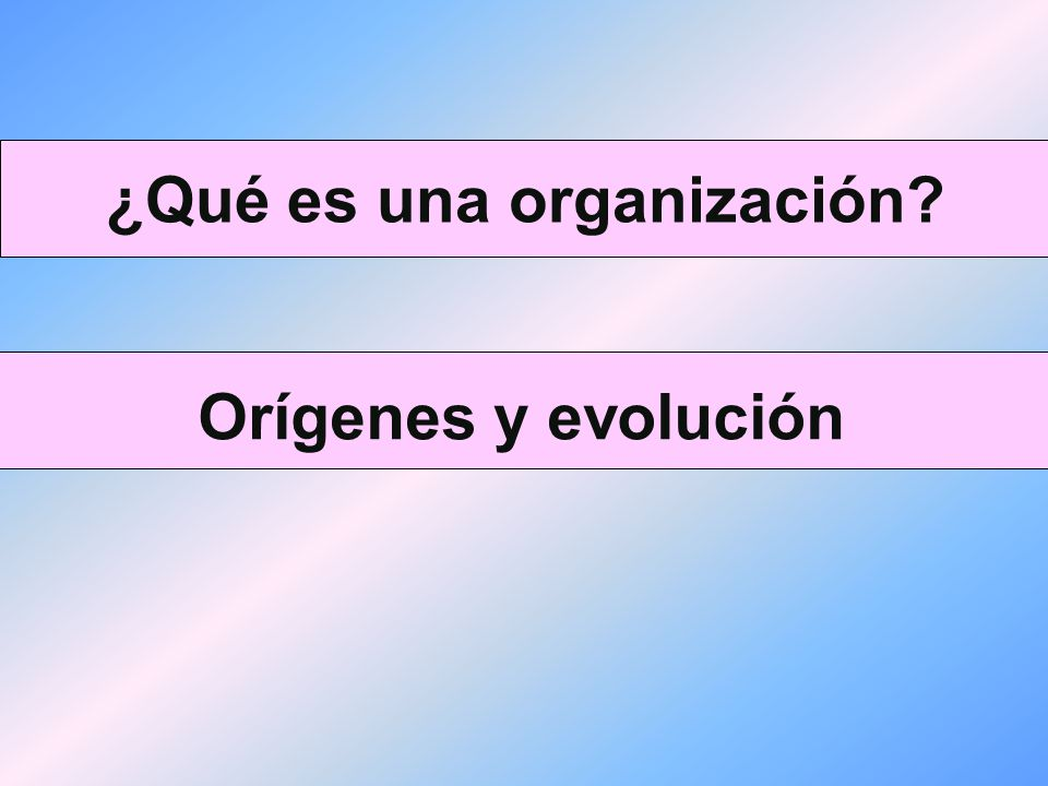 Organización y Sistemas La organización cuenta con una estructura y unos procesos o cadenas de producción y normalmente establecen una división del trabajo entre sus miembros.