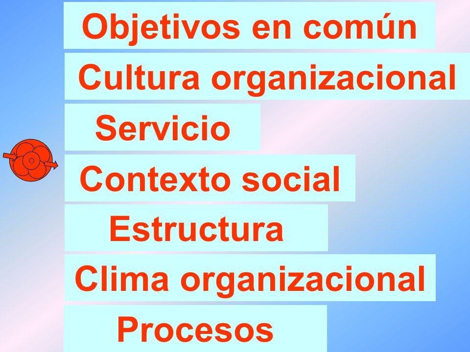 Elementos que caracterizan a una organización: