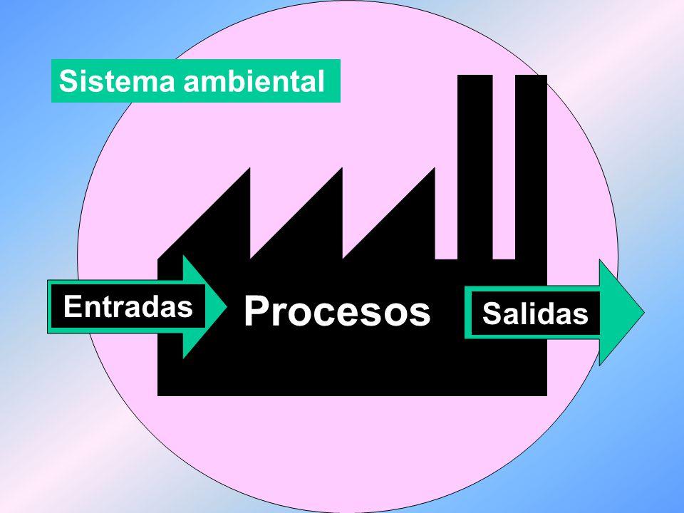 Una de las actividades centrales en una organización es la toma permanente de decisiones.