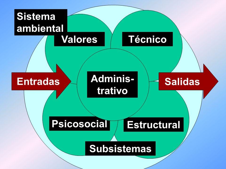 Sistema ambiental Entradas Salidas Procesos