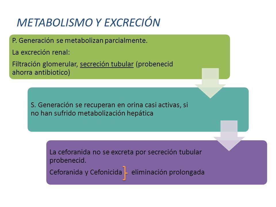 METABOLISMO Y EXCRECIÓN P.Generación se metabolizan parcialmente.
