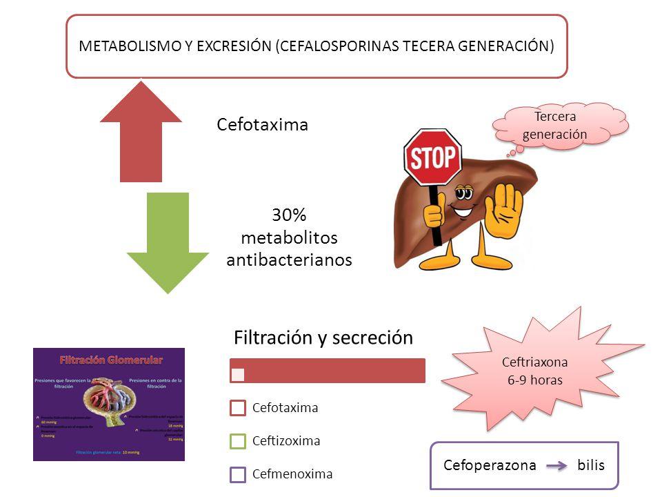 METABOLISMO Y EXCRESIÓN (CEFALOSPORINAS TECERA GENERACIÓN) Cefotaxima 30% metabolitos antibacterianos Tercera generación Filtración y secreción Cefotaxima Ceftizoxima Cefmenoxima Ceftriaxona 6-9 horas Cefoperazona bilis