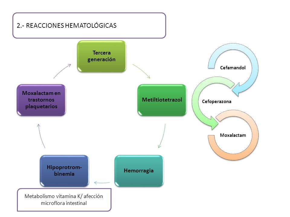 2.- REACCIONES HEMATOLÓGICAS Tercera generación MetiltiotetrazolHemorragia Hipoprotrom- binemia Moxalactam en trastornos plaquetarios Metabolismo vitamina K/ afección microflora intestinal Cefamandol Cefoperazona Moxalactam