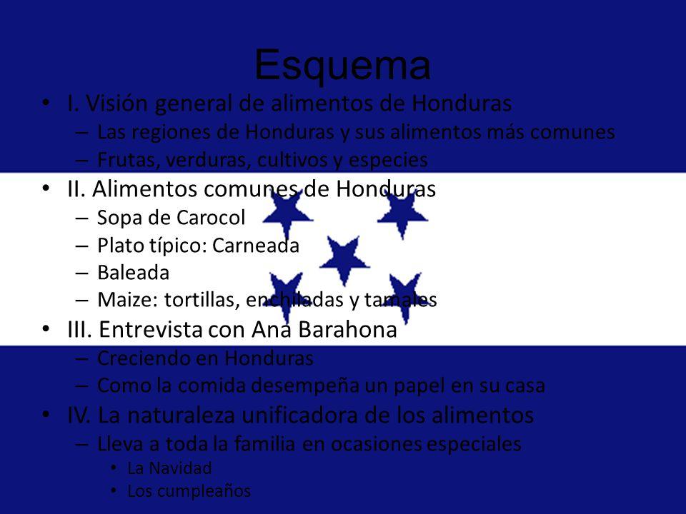 Visión general de alimentos de Honduras Honduras cuenta con diferentes estilos de cocina de una región a otra.
