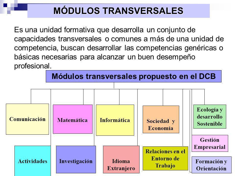 ORGANIZACIÓN DEL MÓDULO MÓDULO TRANSVERSAL : FORMACIÓN Y ORIENTACIÓN