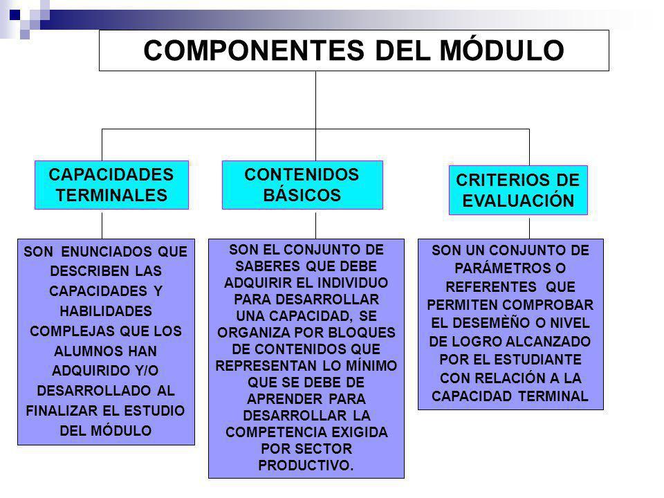 PROGRAMACIÓN CURRICULAR EN LA EDUCACIÓN SUPERIOR TECNOLÓGICA QUÉ ES PROGRAMACIÓN CURRICULAR...