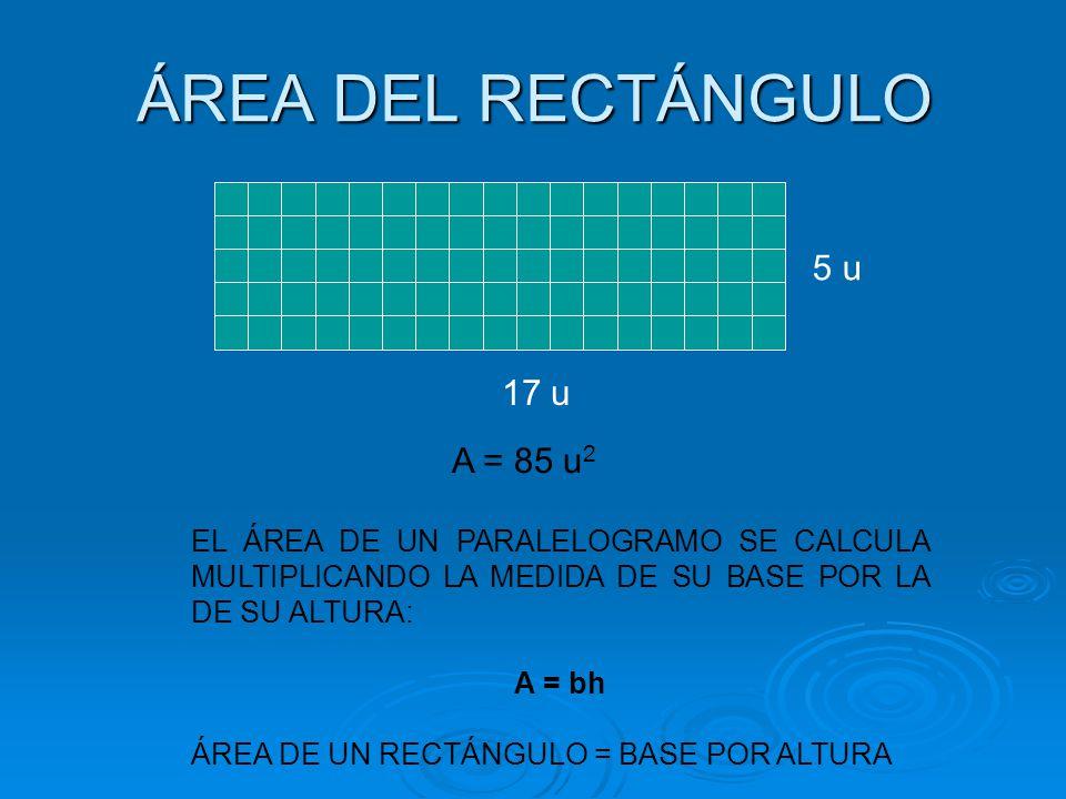 ÁREA DEL RECTÁNGULO 17 u 5 u A = 85 u 2 EL ÁREA DE UN PARALELOGRAMO SE CALCULA MULTIPLICANDO LA MEDIDA DE SU BASE POR LA DE SU ALTURA: A = bh ÁREA DE
