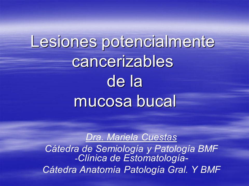 Lesiones potencialmente cancerizables de la mucosa bucal Dra. Mariela Cuestas Cátedra de Semiología y Patología BMF - Clínica de Estomatología- Cátedr