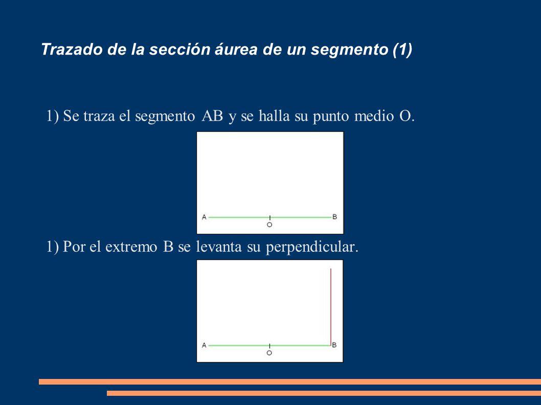Trazado de la sección áurea de un segmento (1) 1)Se traza el segmento AB y se halla su punto medio O. 1)Por el extremo B se levanta su perpendicular.