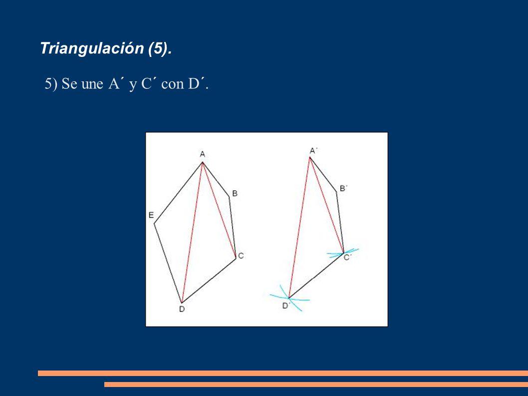 Triangulación (5). 5)Se une A´ y C´ con D´.