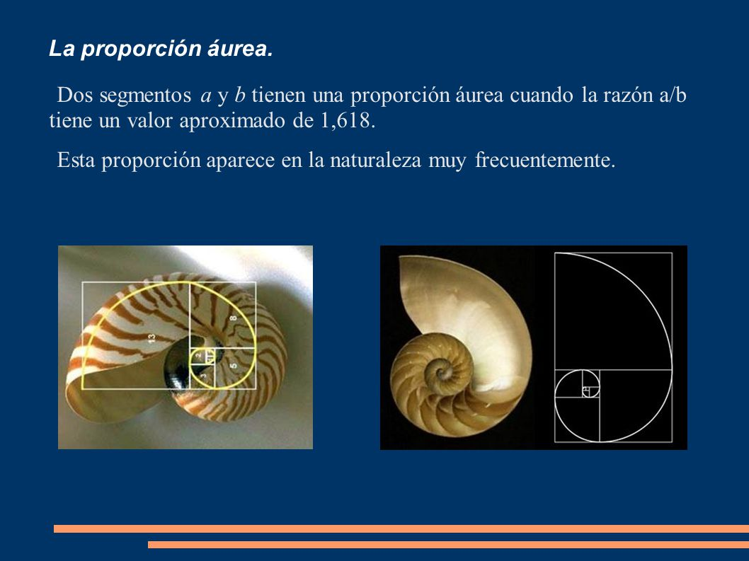 Reproducción de coordenadas (3).