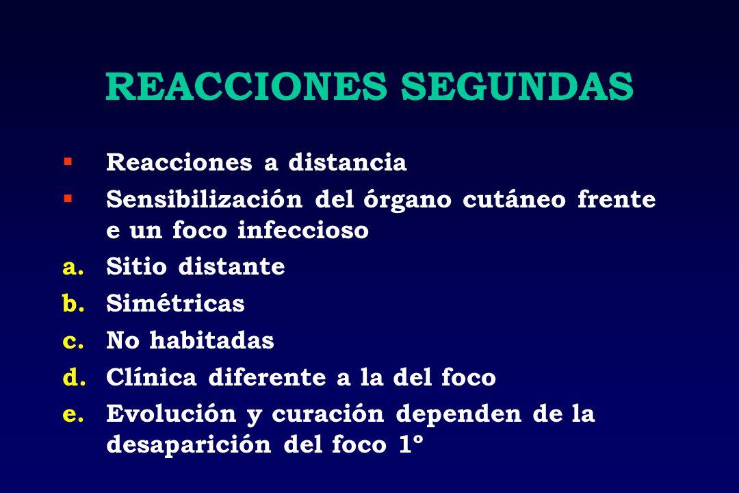 REACCIONES SEGUNDAS Reacciones a distancia Sensibilización del órgano cutáneo frente e un foco infeccioso a.Sitio distante b.Simétricas c.No habitadas