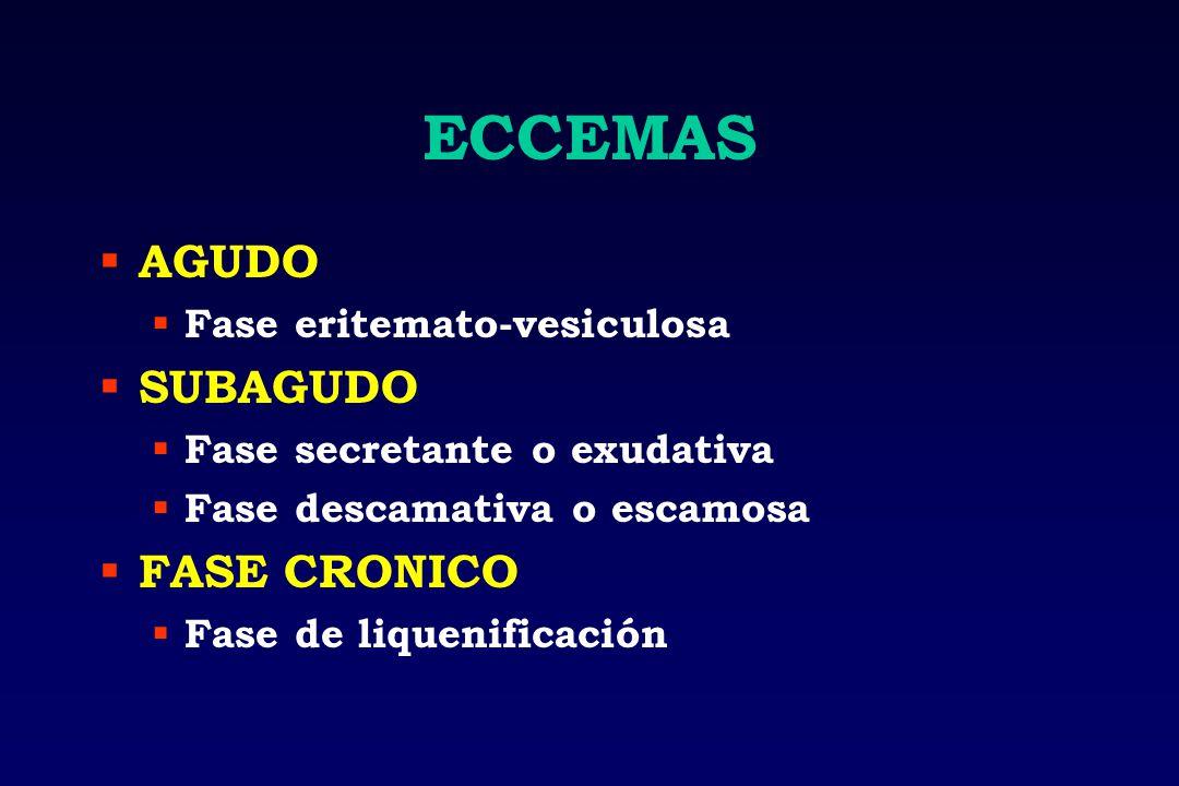 ECCEMAS AGUDO Fase eritemato-vesiculosa SUBAGUDO Fase secretante o exudativa Fase descamativa o escamosa FASE CRONICO Fase de liquenificación