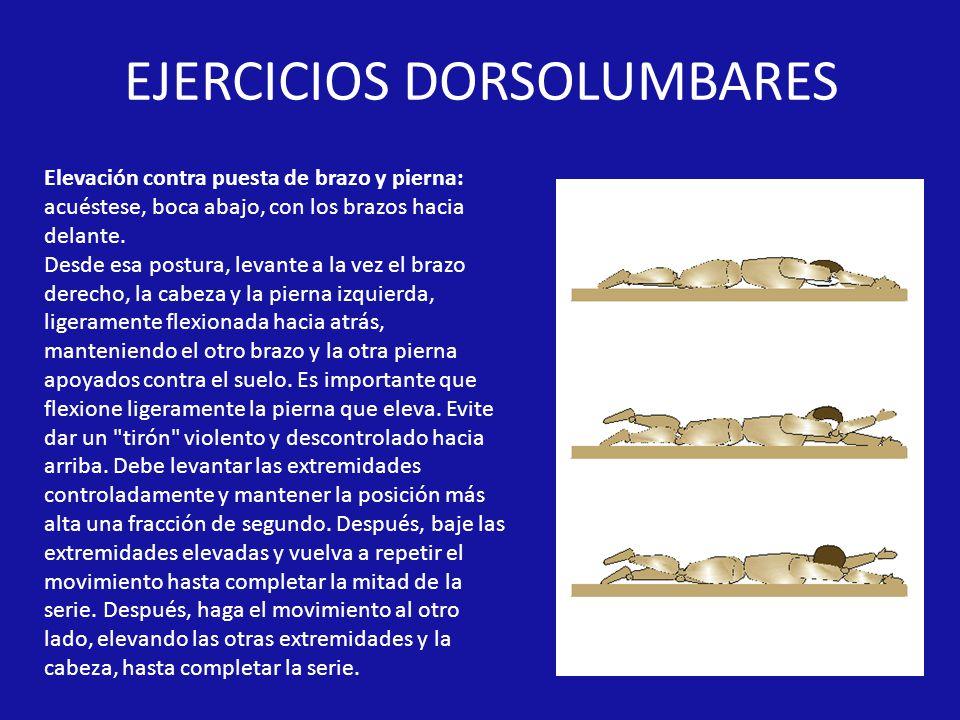 EJERCICIOS DORSOLUMBARES Elevación contra puesta de brazo y pierna: acuéstese, boca abajo, con los brazos hacia delante.