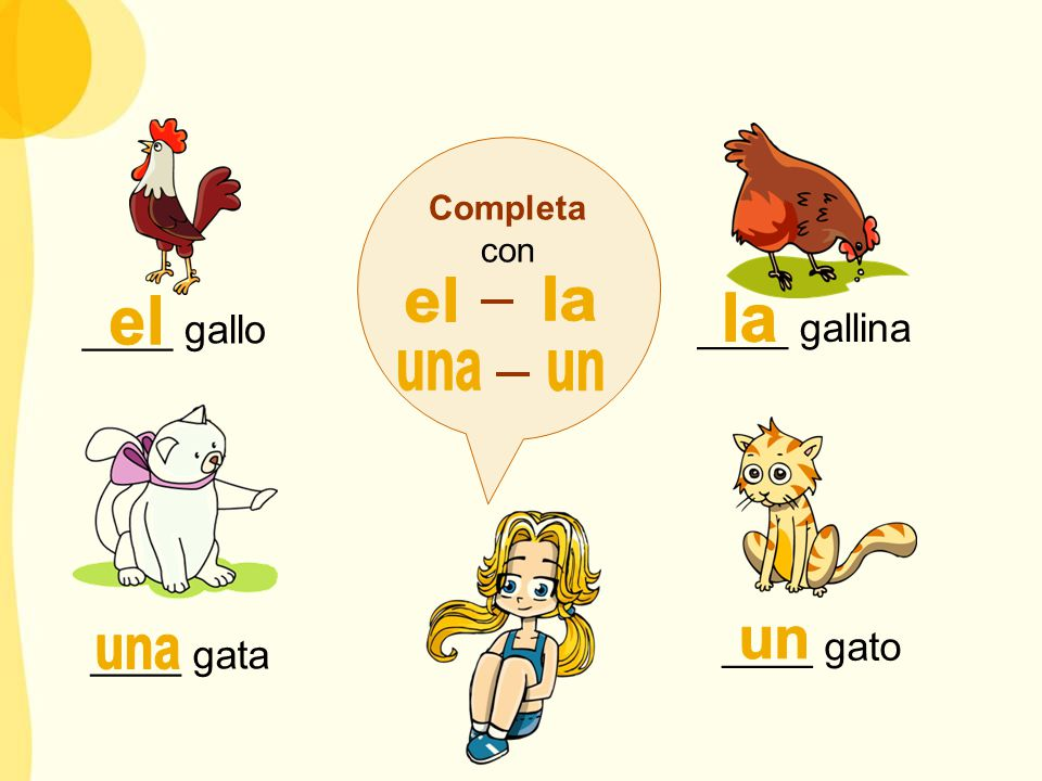 Completa con ____ gallo ____ gallina ____ gata ____ gato