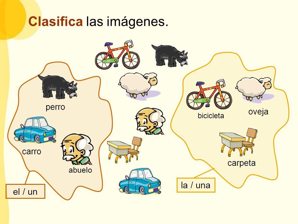 el / un la / una perro carro bicicleta oveja carpeta abuelo Clasifica las imágenes.