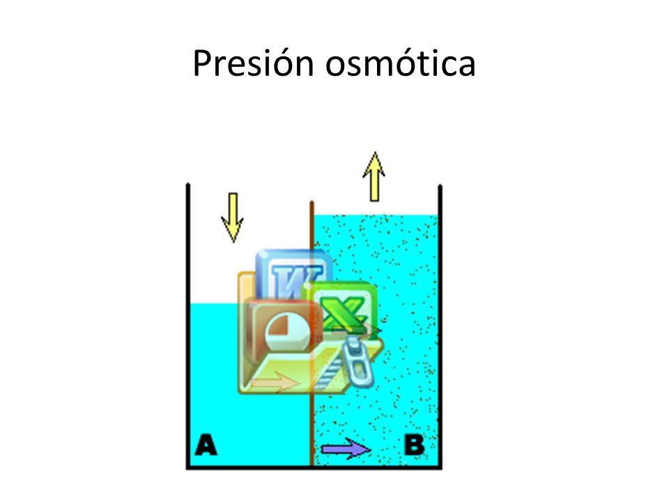 plasmaintersticialintracelular Na +14213914 K+4,24140 Ca ++1,31,20 Mg +0.80,720 Cl -108 4 HCO3 –2428,310 HPO4- H2PO4 -2211 SO4-0,5 1 Fosfocreatina45 Carnosina14 Aminoacidos228 Creatinina0,2 9 Lactato1,2 1,5 glocosa5,6